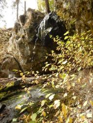 Manuel Creek, Cawston