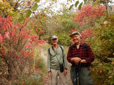 Enjoying the fall colours at Manuel Creek, Cawston