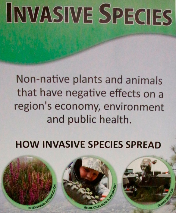 18 OASISS How invasive species spread